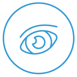 DSCICONS-BLUE_SystemMonitoring-Eye1