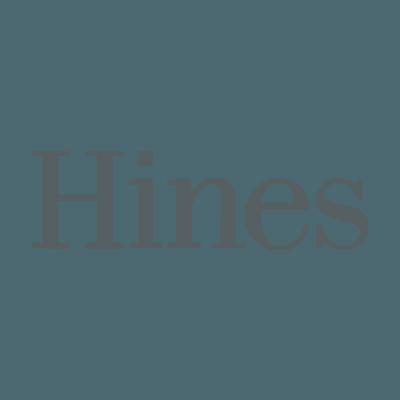 DSC-company-Logo-Hine