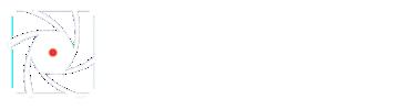 DSC White Logo